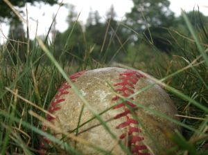 baseball in grass.jpg